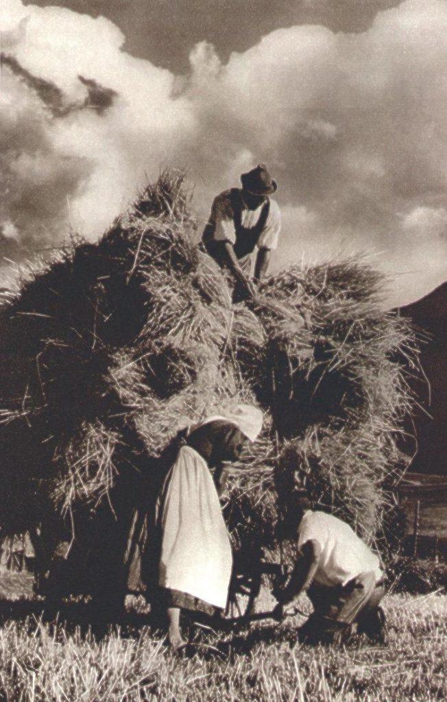 """Fotografia da una rivista d'epoca (1934), La battaglia del grano in montagna: i covoni sul carro - Fonte: """"M.A. de Caterina, Marcello Dudovich: le decorazioni murali (1906 - 1947)""""."""